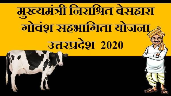 up sahbhagita yojana in hindi